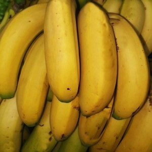 Plátano de Canarias D.O.
