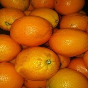 Naranja de mesa Navel Lane Late (1kg)