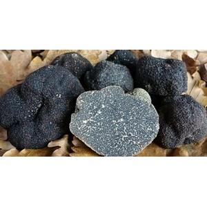 Trufas negras frescas (50grs)