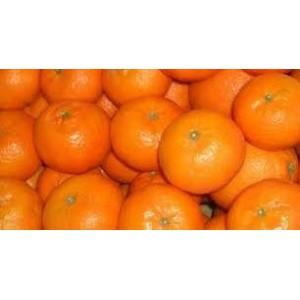 Clementinas (1kg)