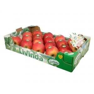 MANZANAS DE SORIA: Caja de Manzanas DE 18 UNIDADES Variedad FUJI de Soria 4,5Kg aprox