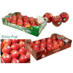 MANZANAS DE SORIA: 2 Cajas de 18 uds. variedades ENVY(PATENTADA) y FUJI. Peso aprox. 9 kg