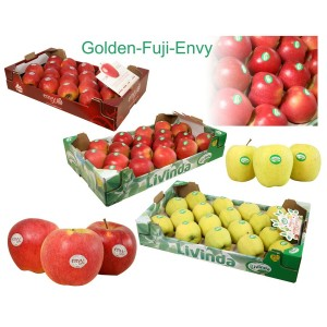 MANZANAS DE SORIA: 3 Cajas de 18 uds. variedades ENVY, FUJI Y GOLDEN DELICIUS. Peso aprox. 13,5 kg
