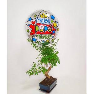 Bonsai con globo
